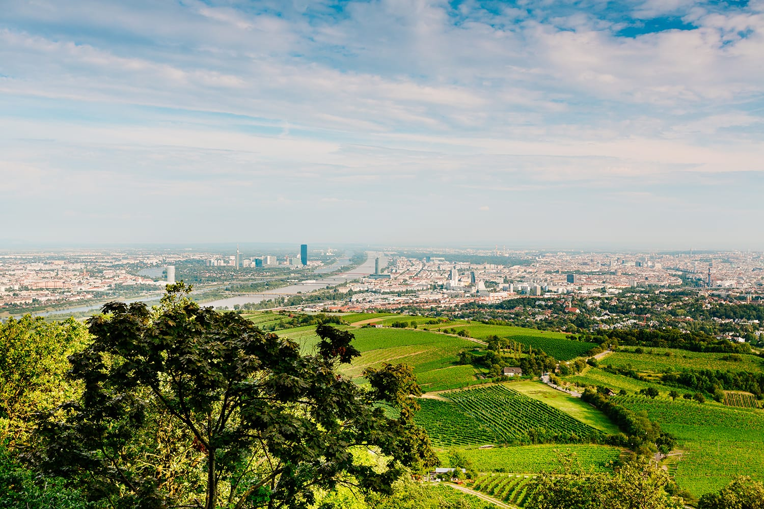 Wonderful panoramic view of Vienna from Kahlenberg (c) VIENNA SIGHTSEEING TOURS/Bernhard Luck